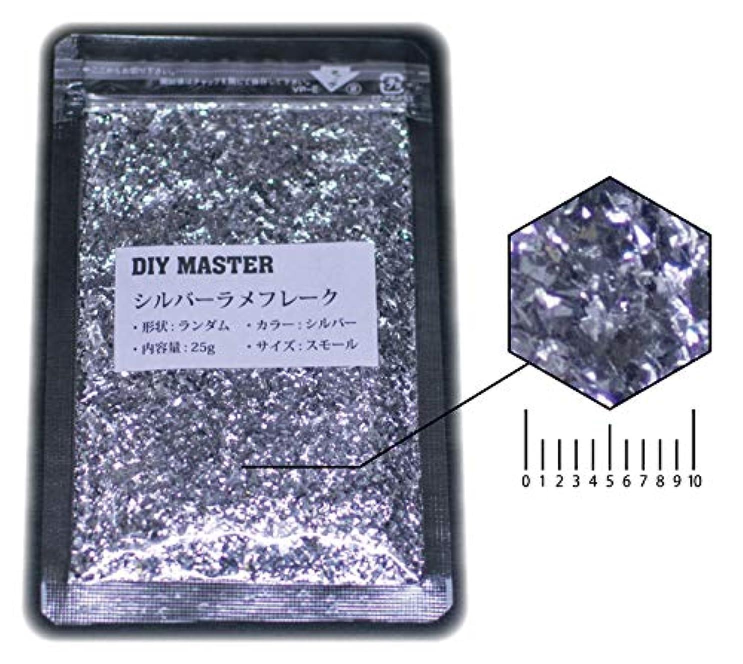 マエストロ基準キャップDIY MASTER シルバー ラメフレーク ランダム スモール 25g