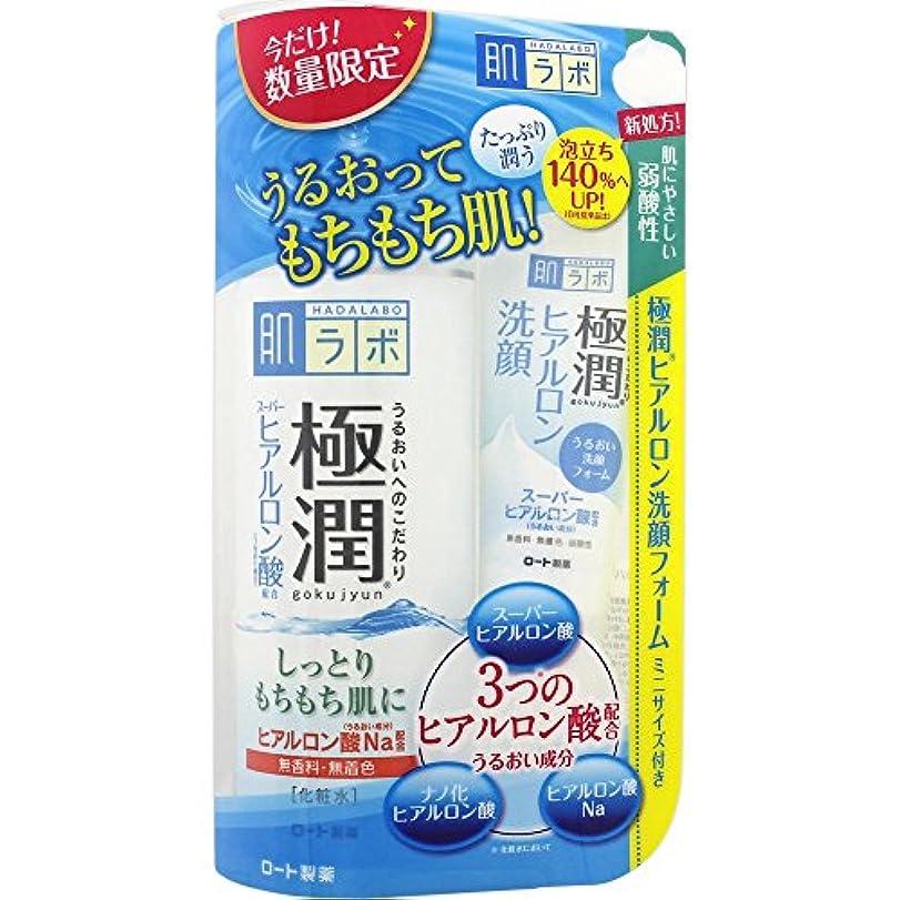 丘サーキットに行く大宇宙肌研(ハダラボ) 極潤 ヒアルロン液 170mL+極潤洗顔フォームミニ 20g付き企画品