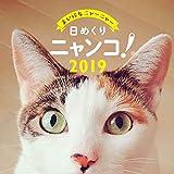 トライエックス 日めくりニャンコ!2019年 猫の日めくりカレンダー