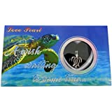 """Love Wish Pearl Kit Chain Neclace Kit Pendant Cultured Peral in Kit Set with Stainless Steel Chain 16"""" (16, Turtle)"""