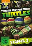 Teenage Mutant Ninja Turtles - Season 3 [DVD]