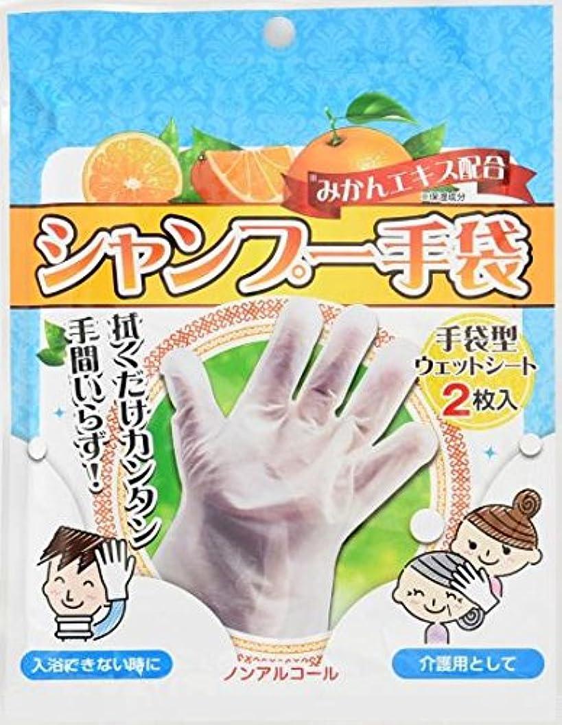 わずかな象浅いシャンプー手袋 2枚入×80袋セット (合計160枚)