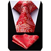 HISDERN Mens Tie Set: Paisley Ties for Men Classic Wedding Necktie + Pocket Square Handky Set