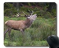 ゲーミングマウスパッドのデザイン、鹿牛の自然 - ステッチのエッジ