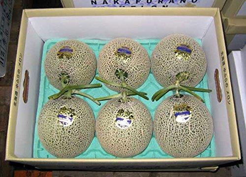 北海道産 富良野メロン(秀品) 1.3kg×6玉 【発送期間】7月上旬〜9月中旬