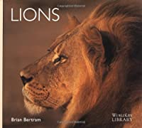 Lions (World Life Library)