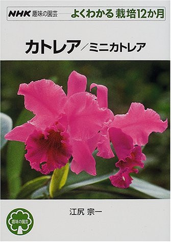 カトレア/ミニカトレア (NHK趣味の園芸 よくわかる栽培12か月)