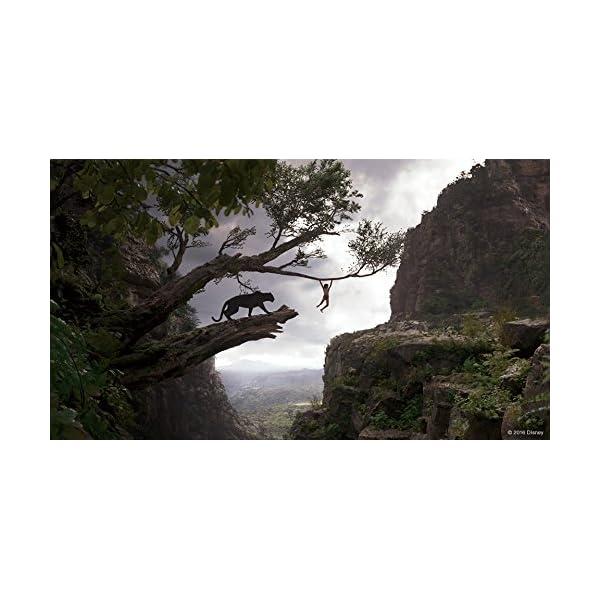 ジャングル・ブック MovieNEX [ブルー...の紹介画像6