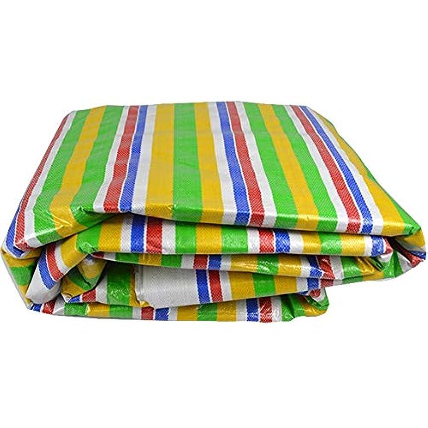 悲観主義者宿題飲み込む19-yiruculture 屋外テント防水シート屋外防水防湿貨物防塵布トラックシェルター防水シート高温アンチエイジング (Color : Stripe, サイズ : 4X10M)
