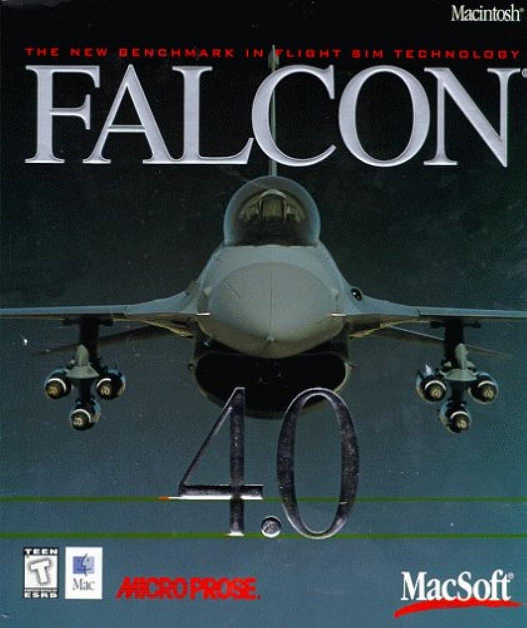 Falcon 4.0 (Mac) (輸入版)