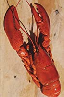 The Lobster Journal: 150 Page Lined Notebook/Diary