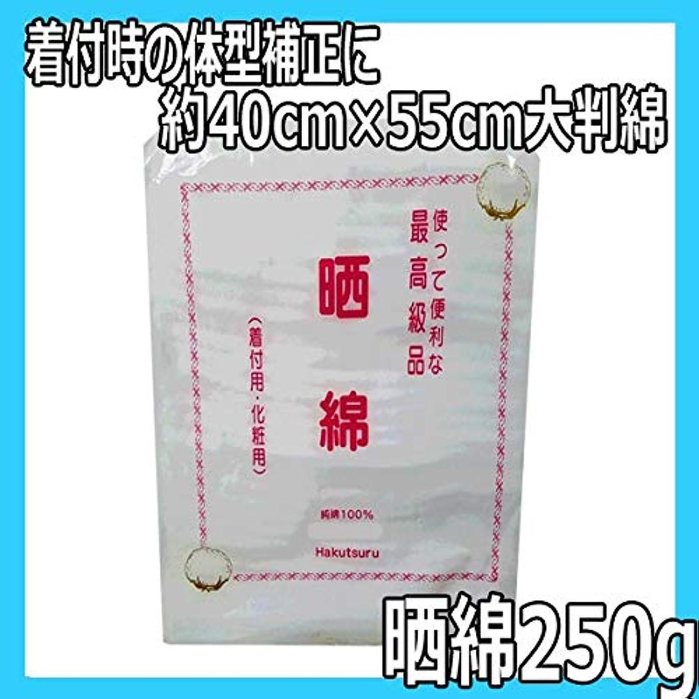 カートコスチュームセラフ晒綿 250g