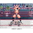 WWE RAW (限定版)