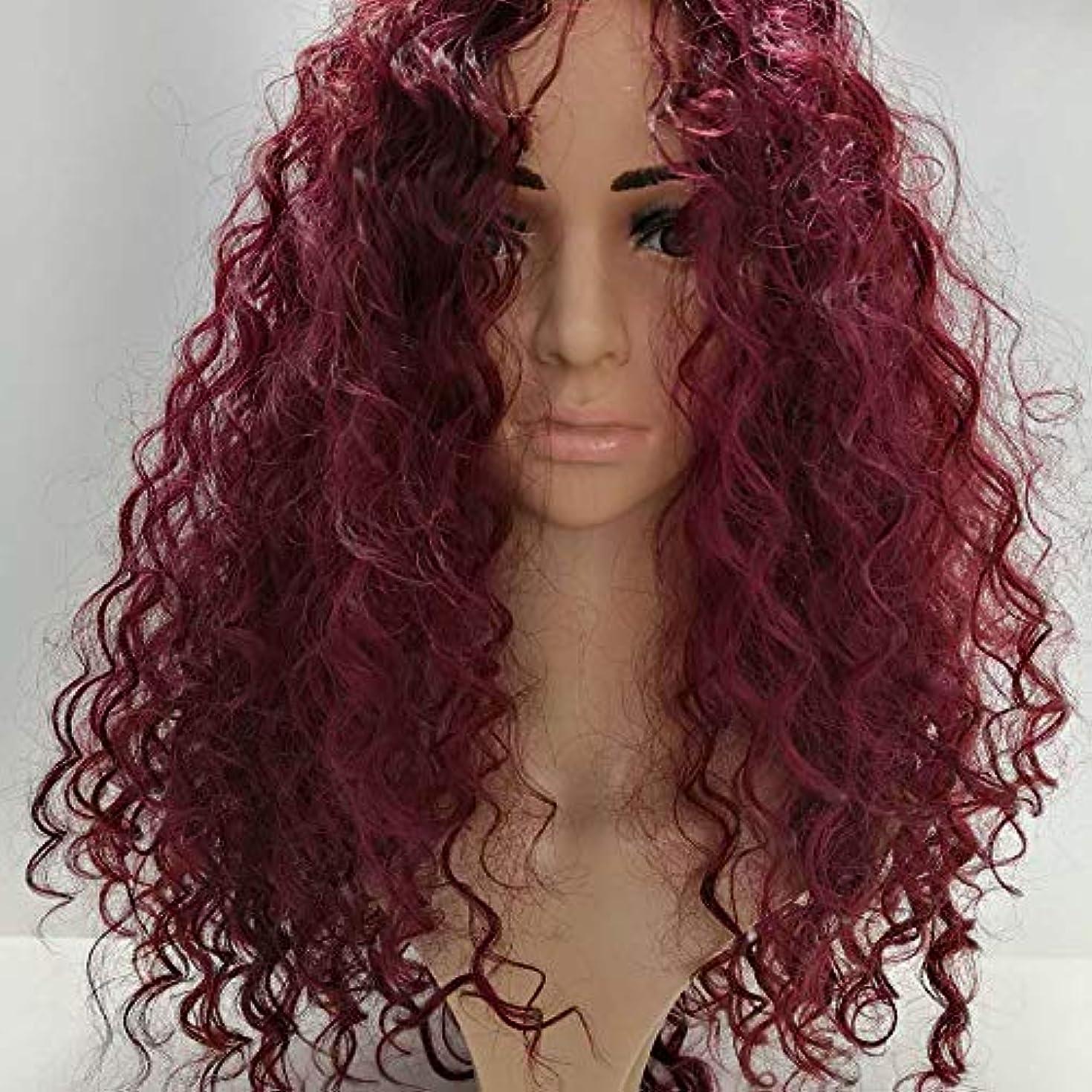脇に織る吸収剤HOHYLLYA 黒のかつら女性のための長いふわふわカーリーファンシードレスウィッグ耐熱合成毛髪のかつらコスプレパーティー用女性かつらレースのかつらロールプレイングかつら (色 : ワインレッド)