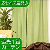 1級 遮光 ウォッシャブル ドレープ カーテン 『 レイン 』 幅100cm × 丈220cm 1間用 2枚組 グリーン