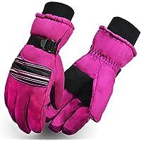 スキーグローブスノーボード冬暖かい手袋の女性とメンズ|防水防風スキー用手袋スキー、オートバイとRiding