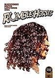 """KAZUYOSHI SAITO LIVE TOUR 2014 """"RUMBLE HORSES""""Live at ZEPP TOKYO 2014.12.12 (DVD初回限定盤)"""