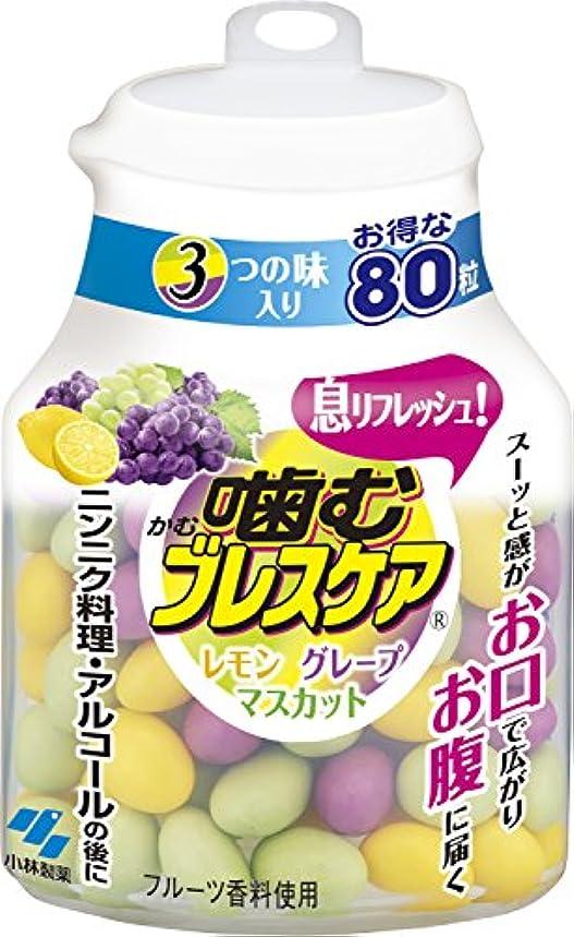 尊厳快い過敏な噛むブレスケアボトル アソート3つの味入 80粒入