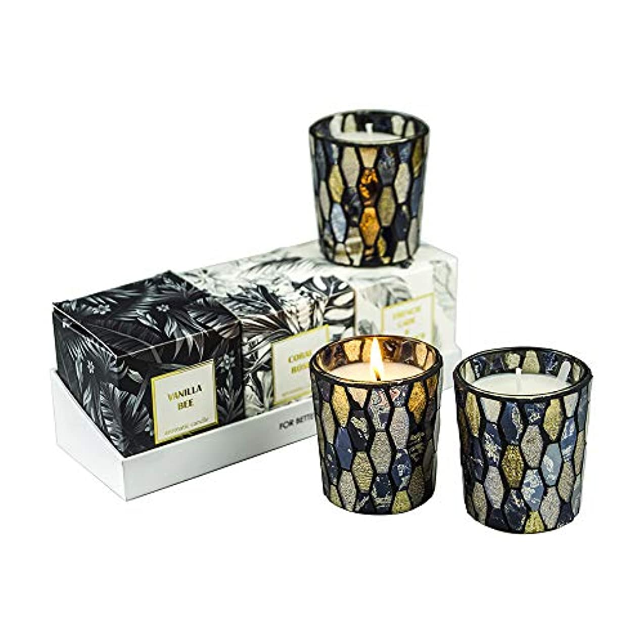 歴史家集団覆す秋の装飾の香りのキャンドル、香りのキャンドルセット天然大豆ワックスポータブル旅行錫キャンドル女性ギフトストレス解消とアロマセラピー
