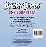 Angry birds. Che sorpresa!