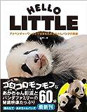 アドベンチャーワールドで生まれたあかちゃんパンダの奇跡: HELLO LITTLE 〈DVD付〉 画像