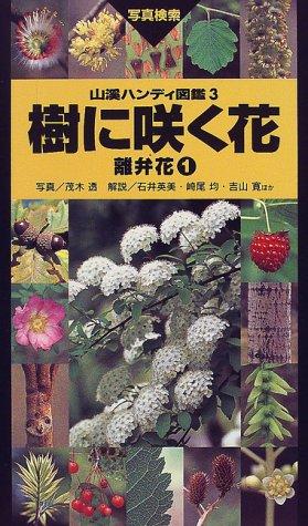 山と渓谷社『山溪ハンディ図鑑3 樹に咲く花 離弁花1』