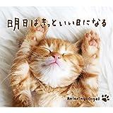 笑顔 (Originally performed by いきものがかり)