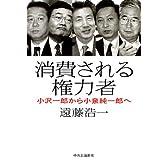 消費される権力者―小沢一郎から小泉純一郎へ