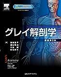 グレイ解剖学 原著第2版