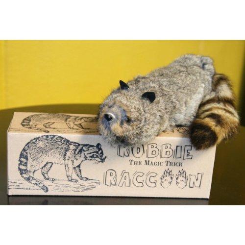【ラッキーくん】Robbie Raccoon【マギー・マジカルペット】
