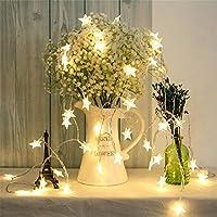 SimonJp イルミネーションライト ストリングライト LED 6m 電球数40 電池式 星型 ワイヤーライト クリスマス パーティー 結婚式 誕生日 飾りライト スター 電飾 室内室外 防水 電球色
