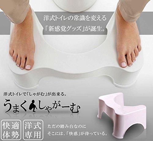 My Vision うまくしゃがーむ トイレ 洋式 和式 しゃがむ 座る 体勢 踏み 台 便所 お手洗い マンション しゃがみ込む MV-FUMIFUMI