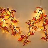 ハロウィン クリスマス 飾り Timsa 紅葉 壁飾り 2XAA電池式 LED 雰囲気灯 ガーランド デコレーション 元旦 お年越し 正月 新年 感謝祭 クリスマスツリー イルミネーション ガーデン装飾籐 誕生日 結婚式 ロマンチック 藤蔓 お祝い お祭り 室内装飾
