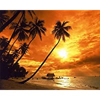 (Frameless) - [Frameless] Diy Oil Painting, Paint By Number Kits Home Decor Wall Pic Value Gift Christmas Gift- Tall coconut tree 41cm x 50cm