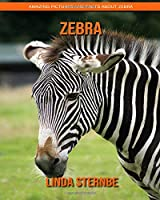 Zebra: Amazing Pictures and Facts About Zebra