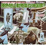 原色 旭山動物園立体図鑑 I 全5種