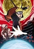 劇場版NARUTO-ナルト- ブラッド・プリズン(通常版)[DVD]