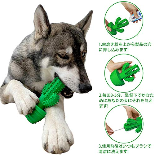 Wisedom『【サボテン】やわらかい犬用歯ブラシ』