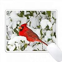 冬のアメリカのホーリー北部の枢機卿、マリオン、イリノイ州、アメリカ。 PC Mouse Pad パソコン マウスパッド