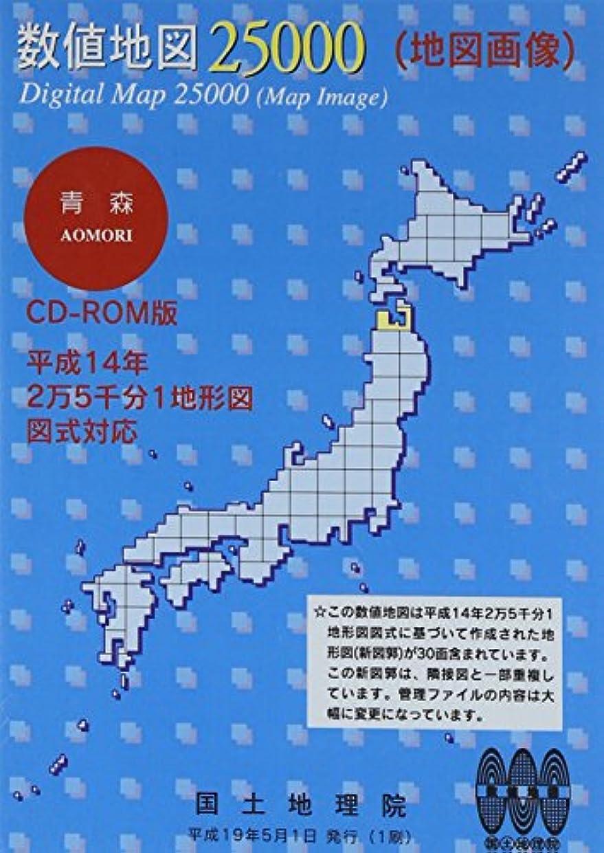 テクスチャーヒット時数値地図 25000 (地図画像) 青森
