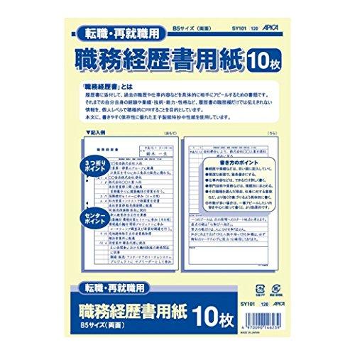 アピカ 職務経歴書 SY101 B5