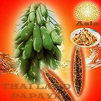 発芽SEEDS:500種:30PCS GARDEN BONSAIのDWARF KAK-DAMパパイヤSEEDS果物OUTDOOR VERY SWEET