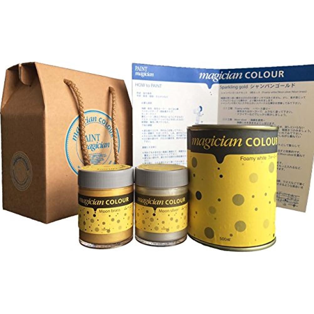 注意グローバル肥満PAINTmagicianCOLORシャンパンゴールドセット