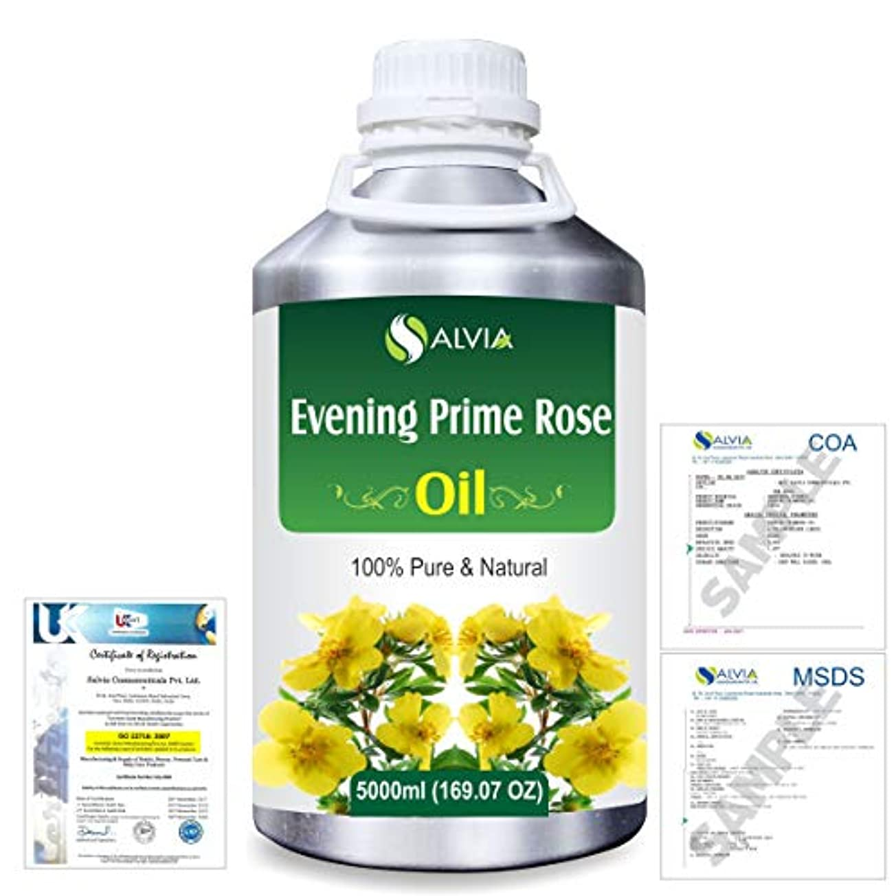 カヌー冷凍庫ゴールデンEvening Prime rose 100% Natural Pure Essential Oil 5000ml/169fl.oz.