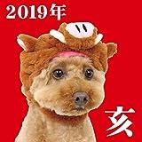 [18w] 《年賀状・お正月》 ペットパラダイス なりきりペッツ いのしし 帽子 濃茶【SS~S】 | お正月 年賀状 干支 犬 干支 被り物 亥 2019 猪 イノシシ コスチューム 犬服 |