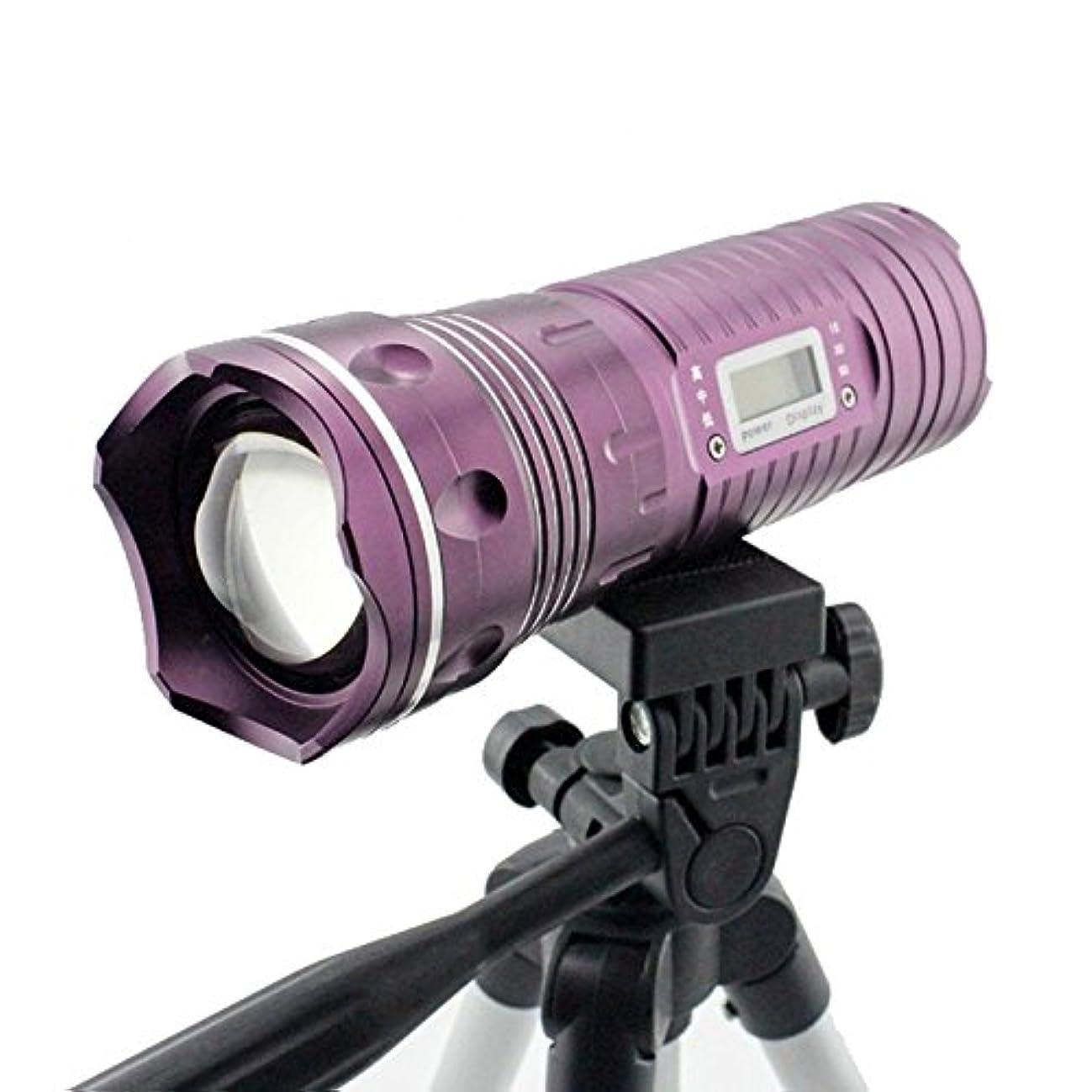 従者ソビエト上院議員三脚のバッテリーでは6000ルーメンプロフェッショナル夜釣りの懐中電灯ブルーライト白色光の魚ランプ点灯