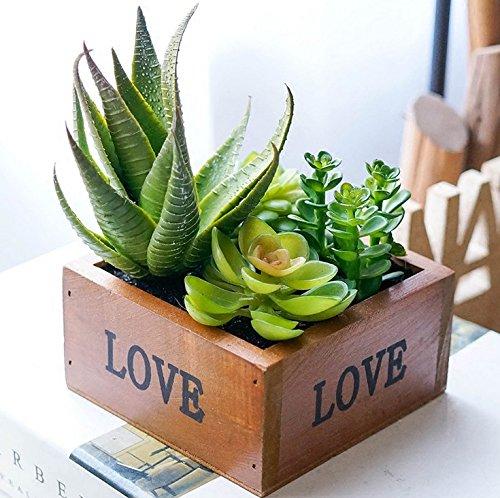 アイデアの盆栽 小さい盆栽 人工植物 光触媒 加工 多肉盆栽の置物 人工観葉植物 アロエ
