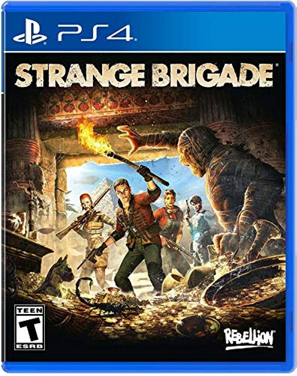学習者一杯多様体Strange Brigade (輸入版:北米) - PS4