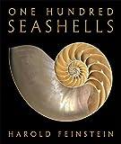 One Hundred Seashells 画像