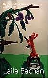 The Fox and the Grapes Kettu ja viinirypäleet : Children's Picture Book English-Finnish (Bilingual Edition) (English Edition) 画像